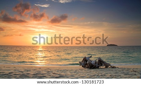 Beautiful sunrise on the beach with old wooden log at Adang island, Thailand - stock photo