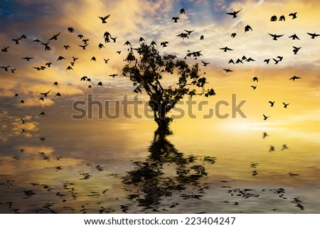 Beautiful sunrise with single tree and water with golden clouds and a flock of birds - stock photo