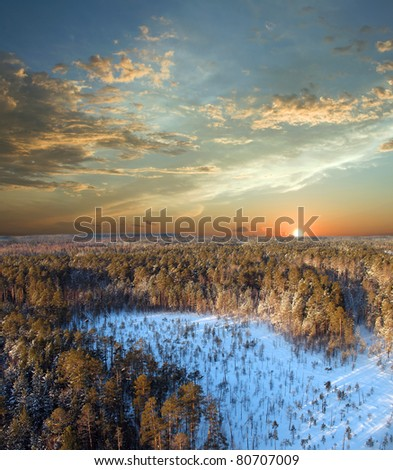Beautiful sunset in wild forest. Fantasy landscape - stock photo