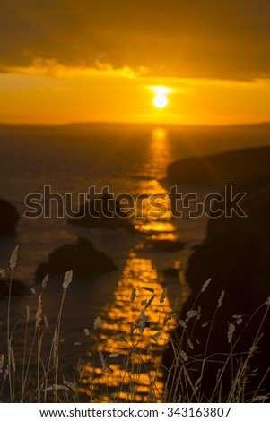 beautiful sunset over the coastal rocks with wild high grass on the wild atlantic way - stock photo