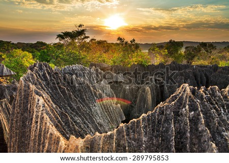 Beautiful sunset view on the unique geography at the Tsingy de Bemaraha Strict Nature Reserve in Madagascar - stock photo