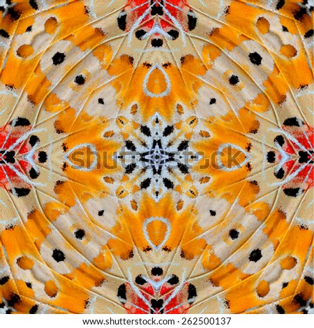 Beautiful symmetric orange and yellow background made of Leopard Lacewing butterfly's wing textures - stock photo