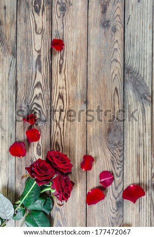 Beautiful three red rose flowers with petal on rustic table - stock photo