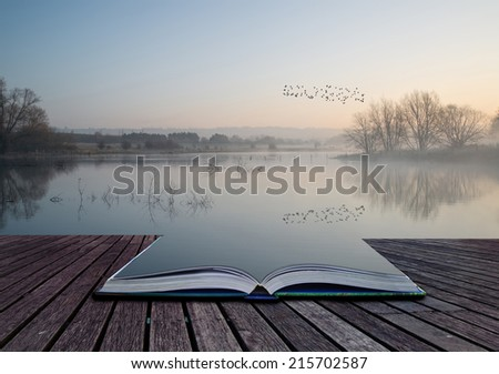Beautiful tranquil landscape of lake in mist - stock photo