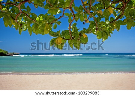 Beautiful tropical beach of Bali with soft sand and crystal water - stock photo