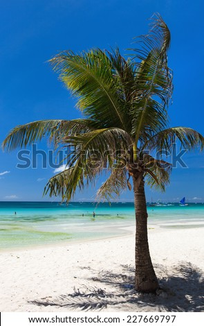Beautiful tropical beach with palm trees, white sand, turquoise ocean water and blue sky - stock photo