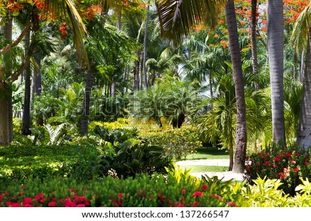 Beautiful tropical garden with palm trees and flowers - stock photo