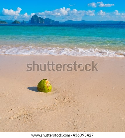 Beautiful tropical sand beach and coconut, Palawan, Philippines - stock photo