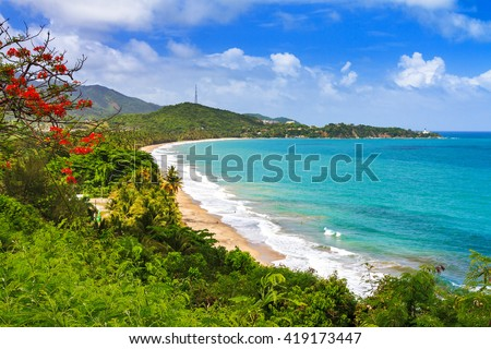 Beautiful tropical summer view of Puerto Rico with red flowers and a white beach - stock photo
