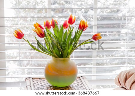 Beautiful tulips in vase on table near window  with winter landscape outside. - stock photo