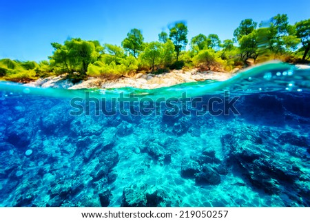 Beautiful undersea nature, gorgeous sea bottom through transparent blue water near tropical island, majestic marine life, travel and vacation concept - stock photo