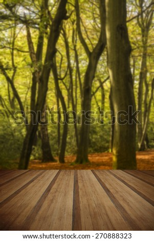 Beautiful vibrant golden Autumn Fall forest landscape with wooden planks floor - stock photo
