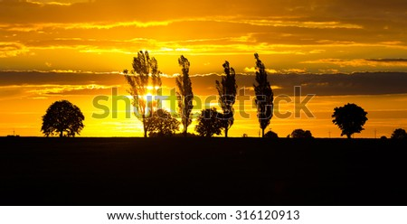 Beautiful vibrant sunset over field. Close up of cloudy sky sunset and trees silhouettes. - stock photo