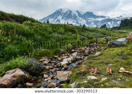 beautiful view of Mount Rainier with a small stream in the foreground on cloudy day.Wa,usa - stock photo