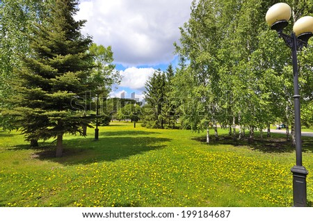 Beautiful view of the city park. Green corner of a large industrial city, where shady trees, flowering yellow dandelions, lights, blue sky with white clouds. - stock photo