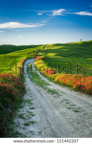 Beautiful view of the country footpath at sunset in Tuscany - stock photo