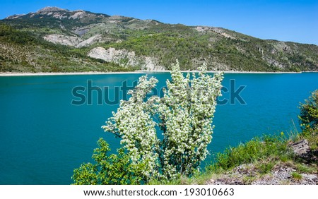 Beautiful view with blossoming tree on the St.Croix lake in Verdon and the mountains of Alpes-de-Haute-Provence. (Provence, France) - stock photo