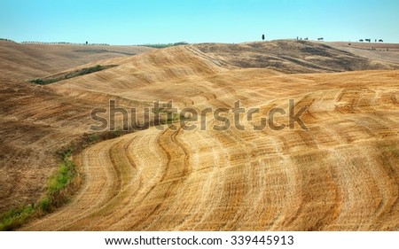 Beautiful views of summer landscape in Tuscany  - stock photo