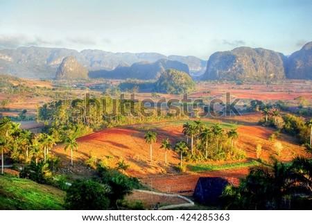 Beautiful Vinales Valley plantation , Cuba  - stock photo