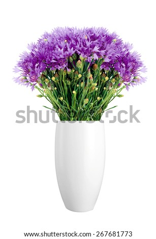 Beautiful violet flowers in vase isolated on white background - stock photo