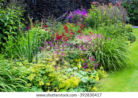 Beautiful walled garden - stock photo