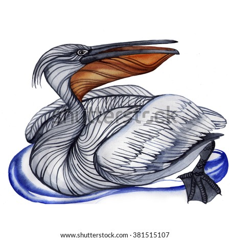 Beautiful watercolor illustration - pelican sitting on the water, drawn by hand, isolated on white background. - stock photo