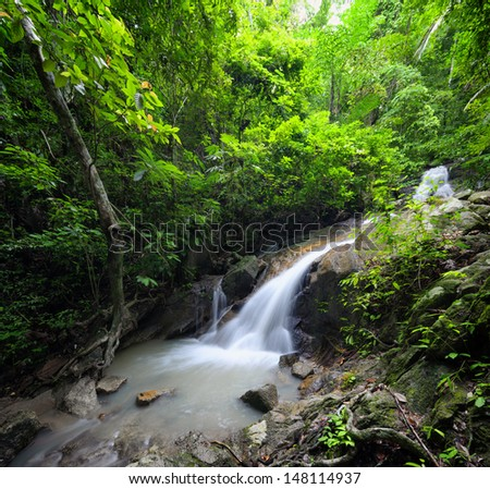 Beautiful waterfall in jungle forest - stock photo