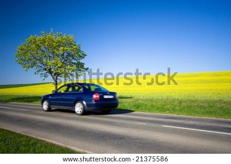 Beautiful weather 7. - beautiful day. Yellow field with blue car - stock photo
