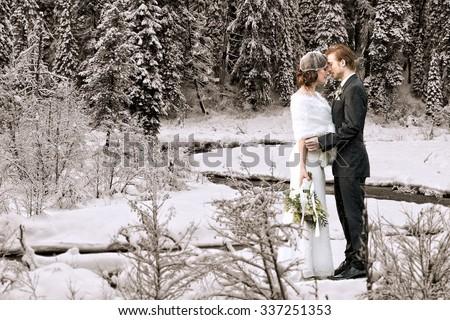 Beautiful wedding couple on their winter wedding - stock photo