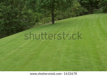beautiful well-cared for lawn - stock photo