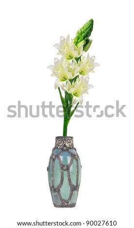 Beautiful white lily in vase isolated on white background - stock photo