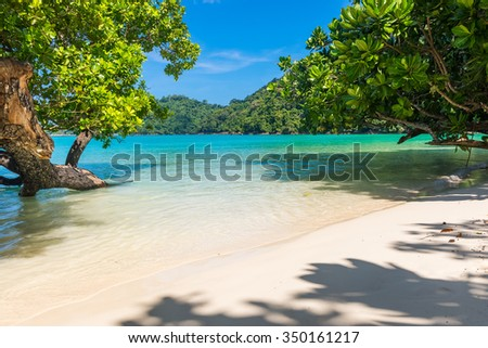 Beautiful white sand beach and crystal clear water of Koh Surin ,Phuket,Thailand - stock photo
