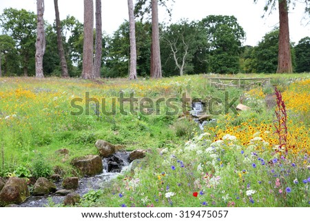 Beautiful wildflower meadow in English countryside with bubbling brook and trees on horizons - stock photo