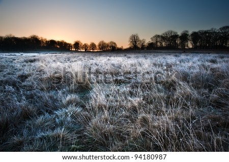 Beautiful Winter landscape across frosty fields towards silhouette trees on horizon into stunning colorful sunrise - stock photo