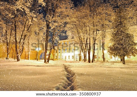 Beautiful winter landscape - city winter park covered with frosted trees and snow in the night - stock photo