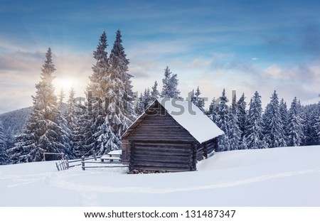 Beautiful winter landscape with snow covered trees. Dramatic sky. Carpathian, Ukraine, Europe. Beauty world. - stock photo