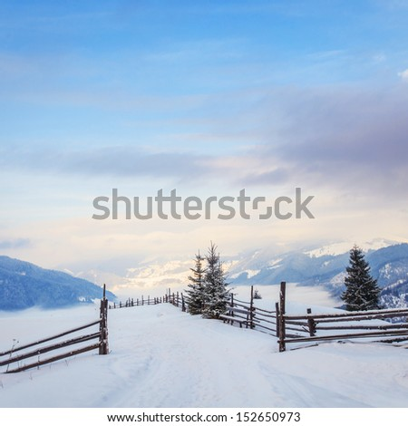 Beautiful winter landscape with snow covered trees. Dramatic sky. Carpathian, Ukraine, Europe.  - stock photo