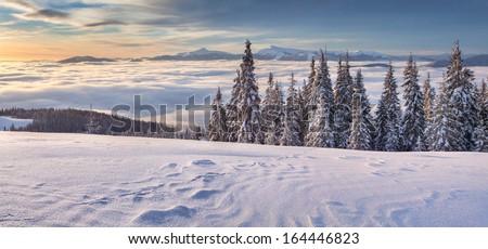 Beautiful winter panorama of the mountains. Mountain valley Pozharska, Carpathian, Ukraine, Europe. - stock photo