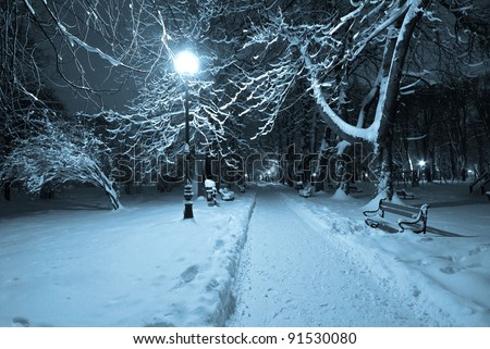 beautiful winter park with night - stock photo