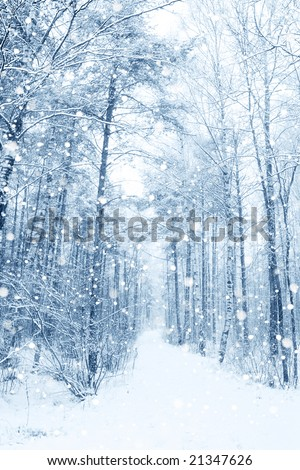Beautiful winter snowy landscape - stock photo