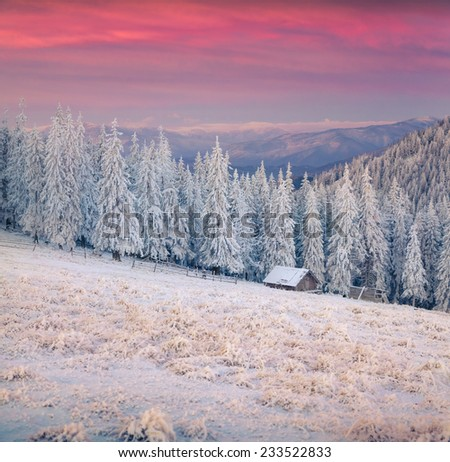 Beautiful winter sunrise in the mountain valley. First frost in December. - stock photo