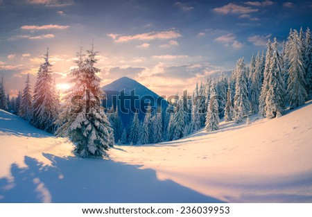 Beautiful winter sunrise with snow covered trees in the mountains. Retro style.  - stock photo