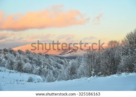 Beautiful winter white snowy frosty frozen cold landscape with snow on tree branches in forest on hill with blue sky sunny day outdoor on natural seasonal background with no people, horizontal picture - stock photo