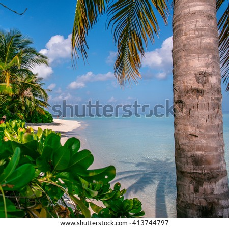 Beautiful with Sun Sea Sand and Sky in Maldive Beach, White tropical beach in Maldives with few palm trees and blue , luxury tropical Maldives resort, Maldives Beach, summer vacation on Maldives - stock photo