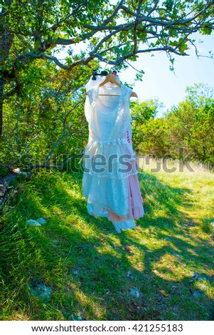 Beautiful  woman dresses hanging on a tree in the wind in summer - stock photo
