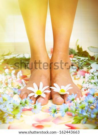 Beautiful woman feet in spa massage salon. - stock photo