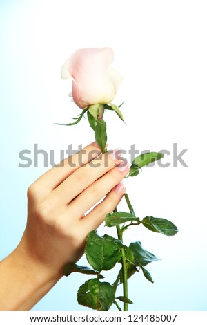 Beautiful woman hand with rose, on blue background - stock photo