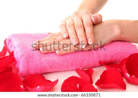 Beautiful woman hands with french manicure and rose petals on pink background - stock photo