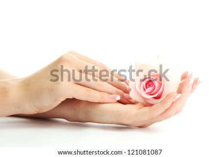 Beautiful woman hands with rose, isolated on white - stock photo