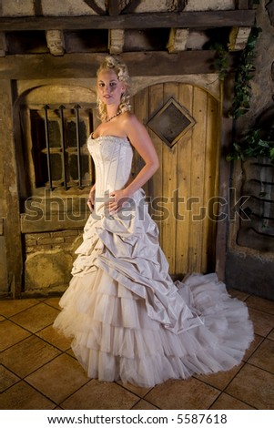 Beautiful woman in a fairytaile environment with beautiful dress - stock photo